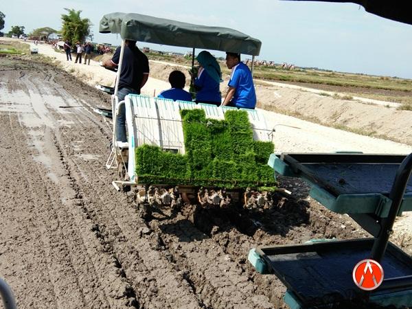 Kemajuan Industri Pertanian Seiring Pembangunan Tamadun 4